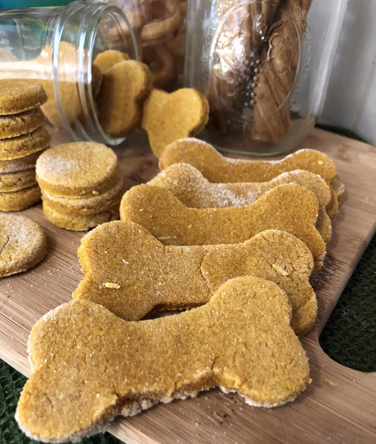 Pumpkin Salmon Dog Treats