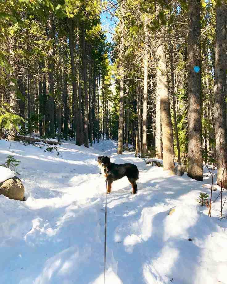 10 Freya Snow Hallway