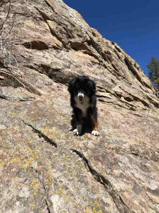 06 Freya Climb