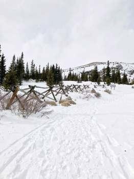 06 Trail - Fence